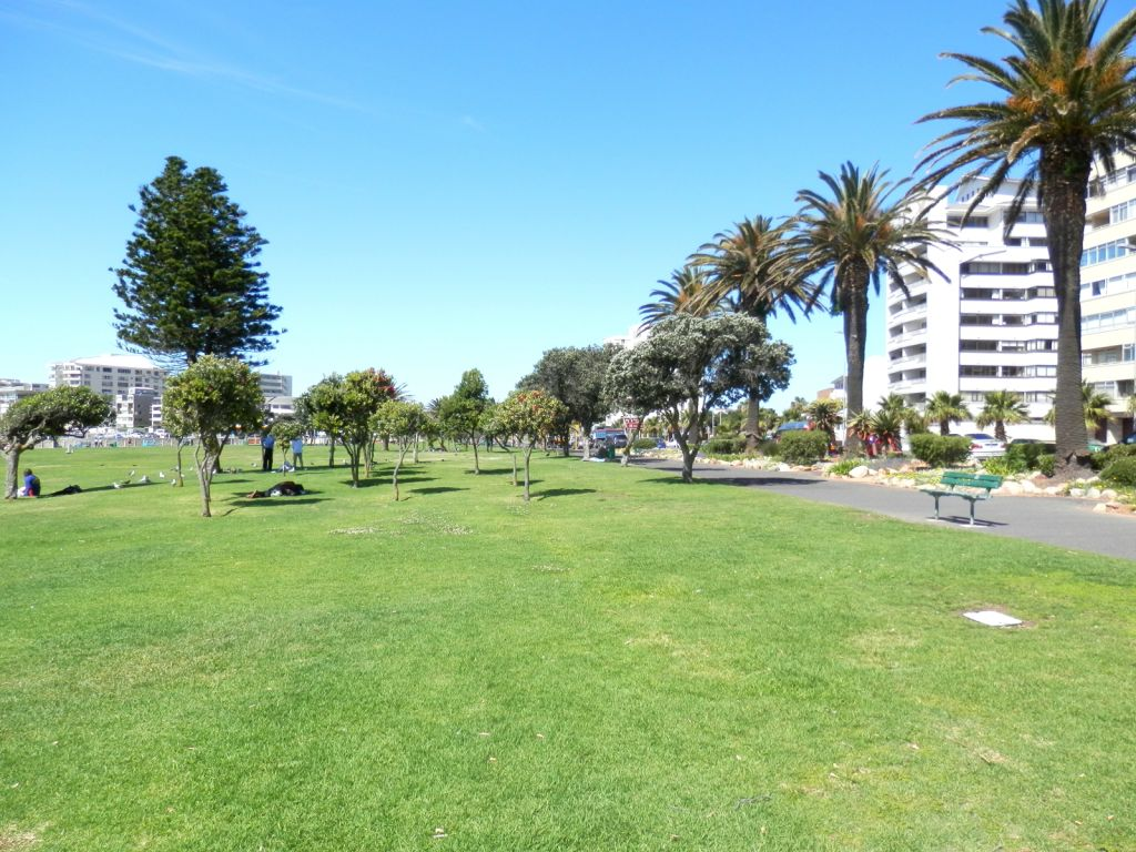 sea-point-apartment-buildings-from-promenade