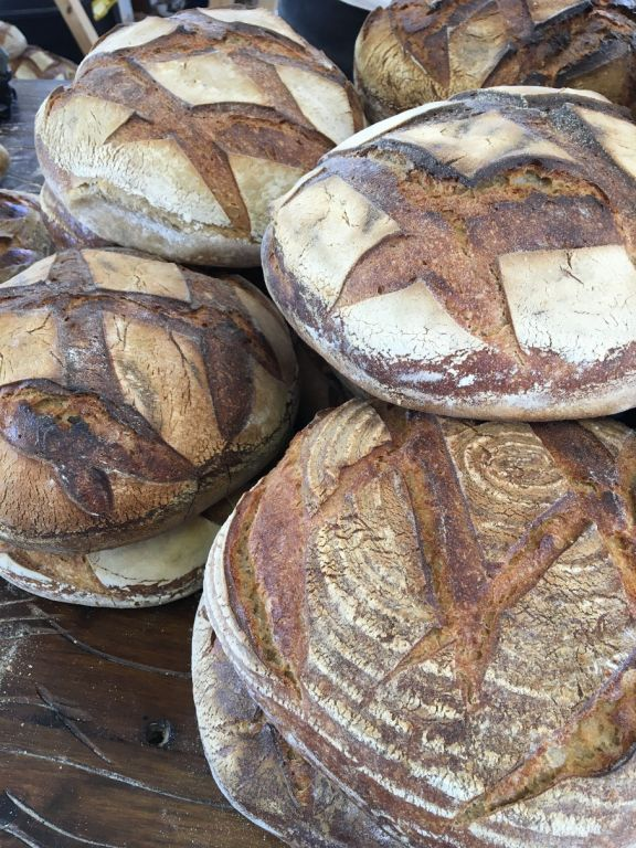 Sourdough loaves needing good homes